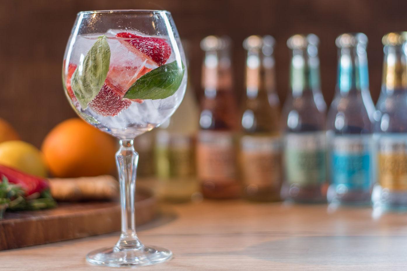 Livelyhood-Gin-and-Tonic