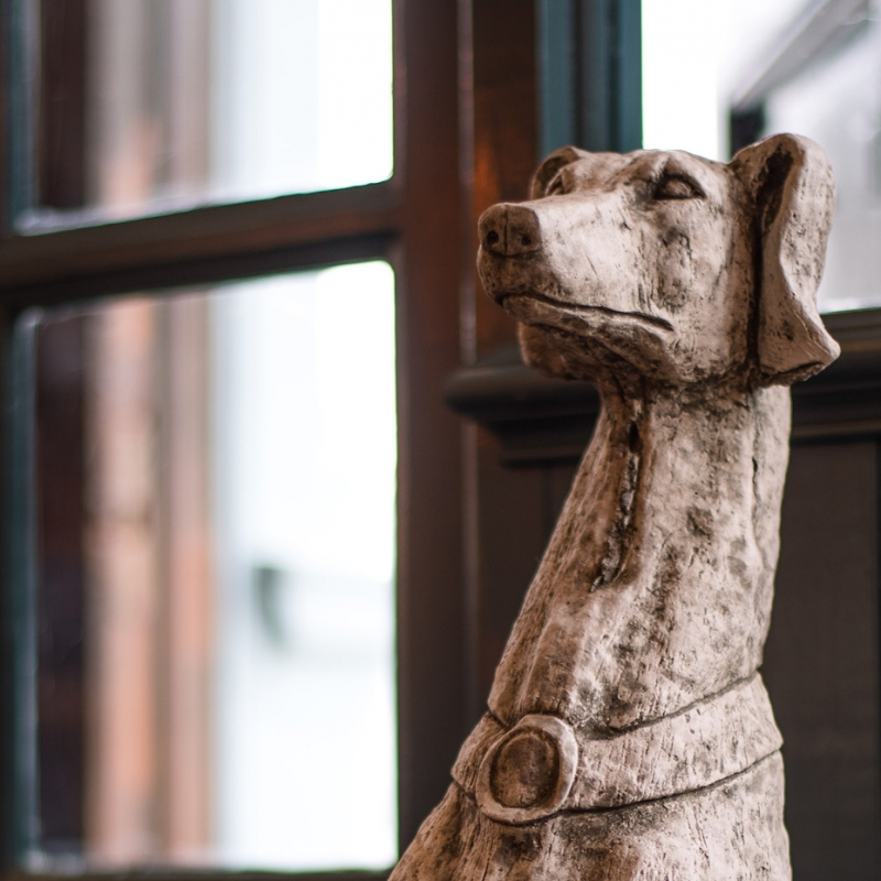 Mere-Scribbler-dog-friendly-streatham-venue-quirky